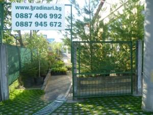 градински вход